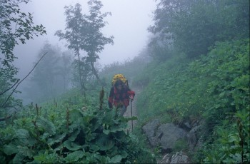 Path above Bionassay glacier